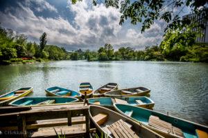Nakajima Park Boating