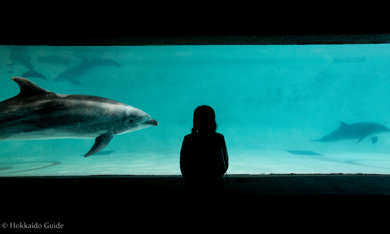 Otaru Aquarium