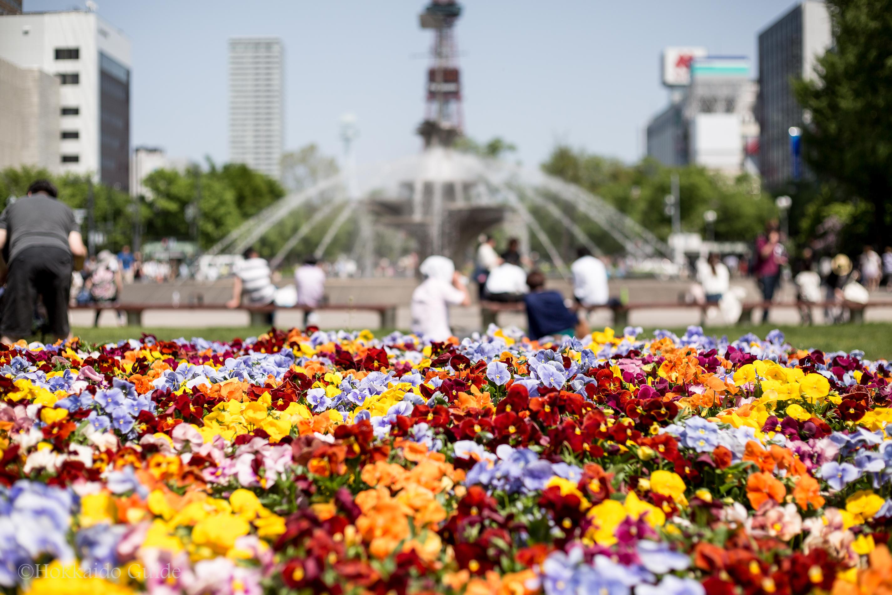 Sapporo Lilac Spring Festival
