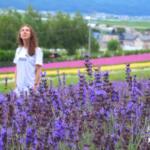 Lavender Fields Furano