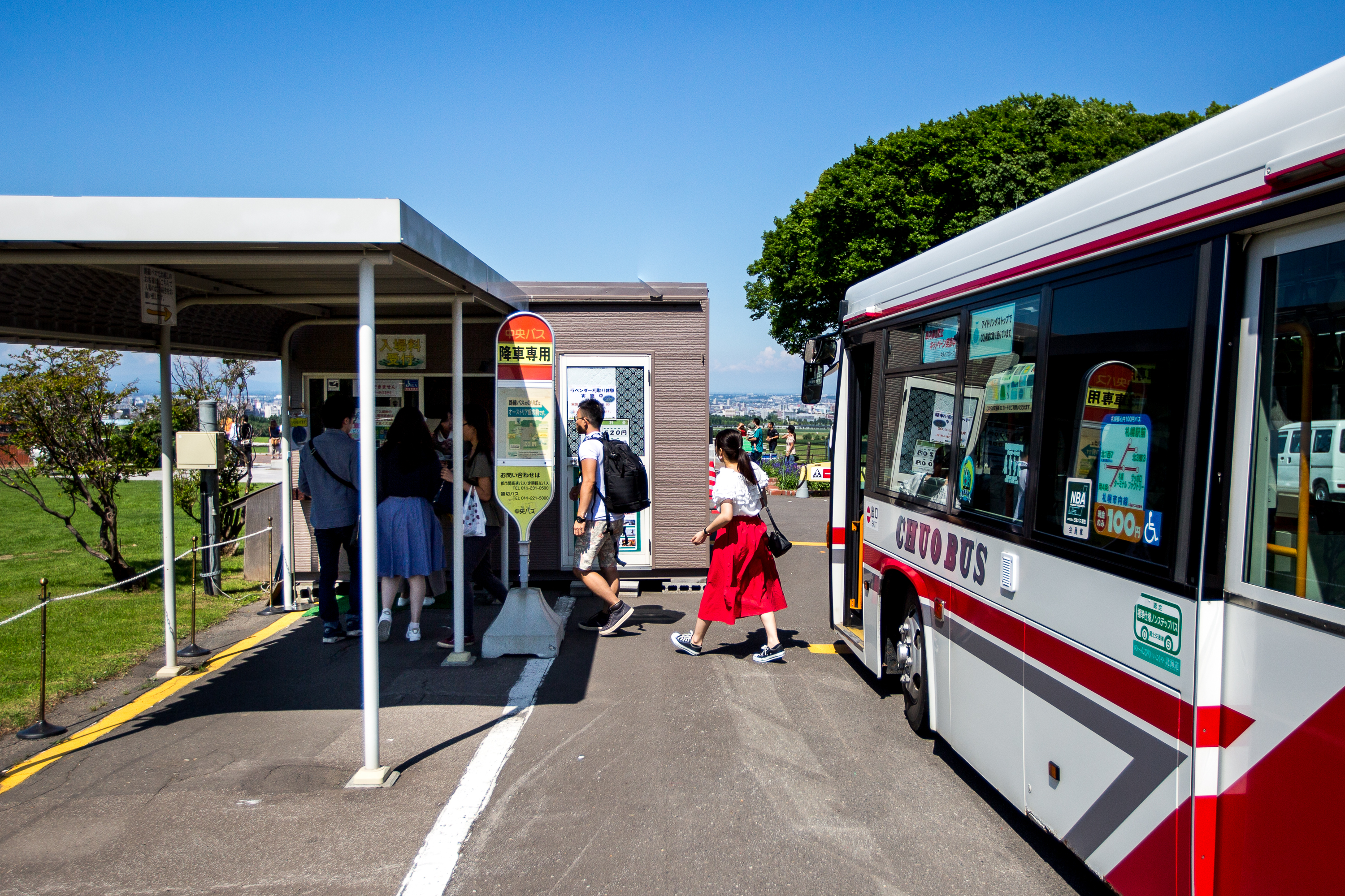 Buses at Hitsujigaoka Observation Hill