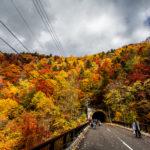 Hoheikyo Dam autumn leaves