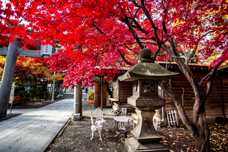 Iyahiko Shrine