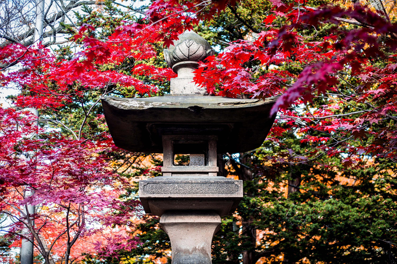 Iyahiko Shrine statue