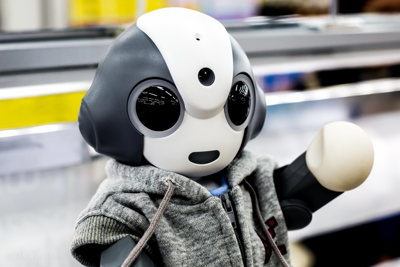 BIC Camera Sapporo robot section