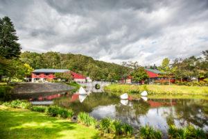 札幌芸術の森野